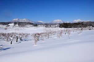 北信濃の雪山の写真素材 [FYI03372998]
