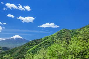 新緑の山と富士山の写真素材 [FYI03373796]