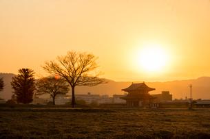 平城宮跡の朝の写真素材 [FYI03373993]