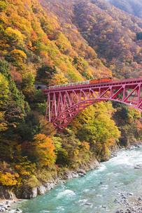 黒部峡谷鉄道 トロッコ列車の写真素材 [FYI03374039]