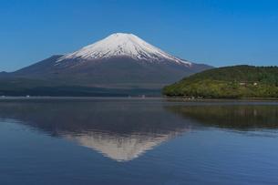 山中湖畔より富士山を望むの写真素材 [FYI03374098]