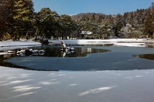 冬の毛越寺庭園の写真素材 [FYI03374301]