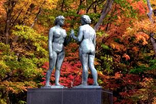 秋の十和田湖畔に建つ乙女の像を湖畔より望むの写真素材 [FYI03374319]