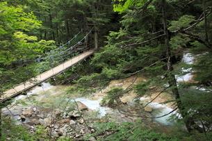 乗鞍高原の吊り橋の写真素材 [FYI03374384]