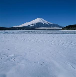 山中湖の雪景色と富士山の写真素材 [FYI03374457]