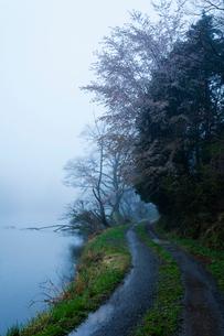 雨霧に霞む沢池と砂利道の写真素材 [FYI03374568]