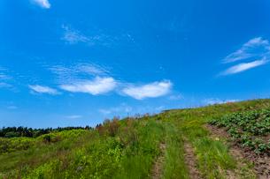 轍の道と青空の写真素材 [FYI03374623]