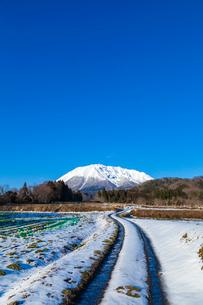 冬晴れの大山と轍道の写真素材 [FYI03374897]