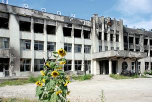 全焼した門脇小学校正面玄関の写真素材 [FYI03375072]