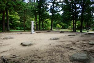 毛越寺・金堂円隆寺跡の写真素材 [FYI03375082]