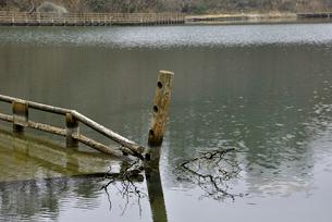 奥松島・水没した柵の写真素材 [FYI03375200]