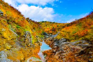 栗駒山須川口からの登山ルートの写真素材 [FYI03375395]