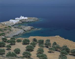 オリーブ畑と教会 シフォノス島 ギリシャの写真素材 [FYI03375419]