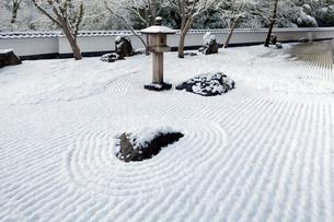 雪の新見美術館庭園の写真素材 [FYI03375473]