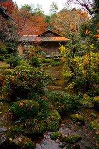 秋の寂光院の写真素材 [FYI03375614]