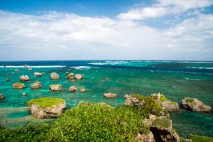 宮古島 東平安名崎 隆起珊瑚礁の石灰岩の写真素材 [FYI03375740]