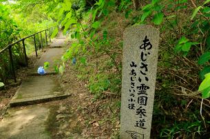 関西花の寺霊場第一番札所 あじさい寺の写真素材 [FYI03375836]