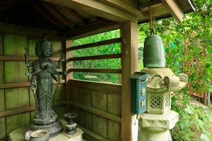 関西花の寺霊場第一番札所 あじさい寺の写真素材 [FYI03375849]
