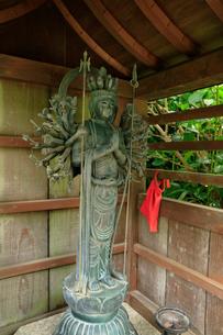 関西花の寺霊場第一番札所 あじさい寺の写真素材 [FYI03375866]