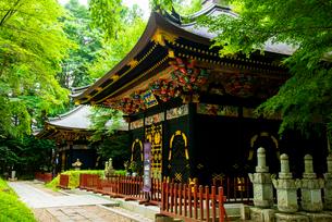 感仙殿・善応殿の写真素材 [FYI03375918]