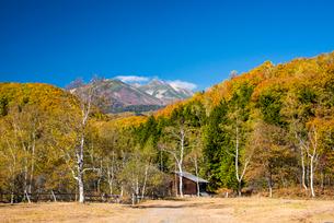 秋の一ノ瀬牧場と乗鞍岳の写真素材 [FYI03375959]
