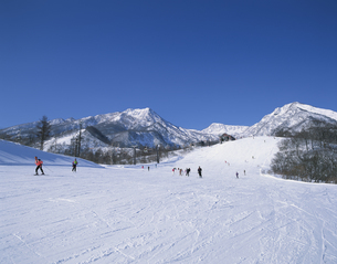 赤倉温泉スキー場 新潟県の写真素材 [FYI03376051]