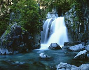 仙樽の滝  岐阜県の写真素材 [FYI03376053]