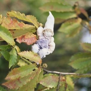 枝葉と丘の妖精人形のアップ フォトイラスト 美瑛 北海道の写真素材 [FYI03376115]
