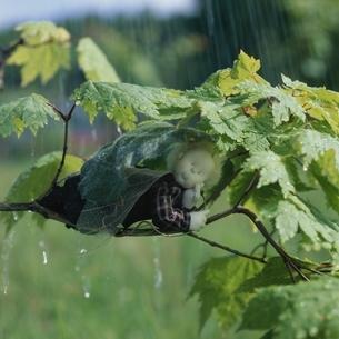 木の葉で雨宿りする丘の妖精人形 フォトイラスト 美瑛 北海道の写真素材 [FYI03376117]
