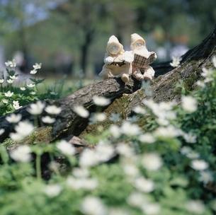 本を読む丘の妖精人形 フォトイラスト 旭川郊外 美瑛の写真素材 [FYI03376120]