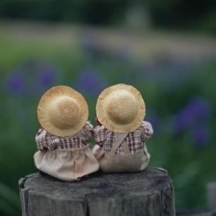 丸太上の後姿の丘の妖精人形のアップ フォトイラスト 美瑛の写真素材 [FYI03376128]