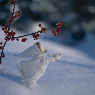 雪とツルウメモドキの実と丘の妖精人形のアップ フォトイラストの写真素材 [FYI03376133]