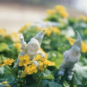 花と丘の妖精人形のアップ フォトイラスト 美瑛の写真素材 [FYI03376141]