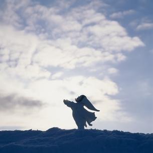 空と雲と丘の妖精人形 フォトイラスト 美瑛 北海道の写真素材 [FYI03376142]