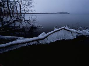 つららの凍る弟子屈湖の写真素材 [FYI03376155]