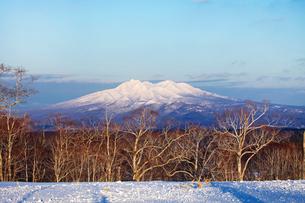 夕方の斜里岳の写真素材 [FYI03376203]