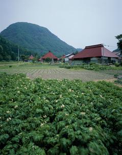 喰丸の集落と館の腰山の写真素材 [FYI03376320]
