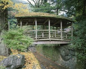 御幸の橋   河辺村 愛媛県の写真素材 [FYI03376327]