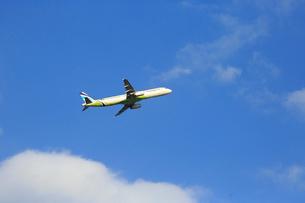 ジェット機 AIR BUSANの写真素材 [FYI03376360]