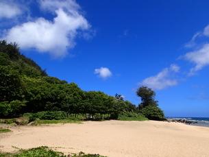 カウアイ島のハエナビーチの写真素材 [FYI03376479]