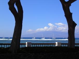 ラハイナの海辺の写真素材 [FYI03376502]