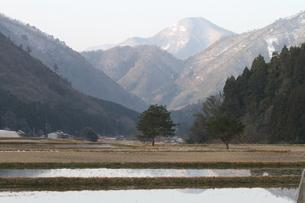 有機の里柿木村から眺める盛太ヶ岳と湛水水田の写真素材 [FYI03376554]
