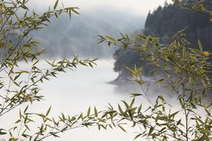 竹 菅野湖の気嵐の写真素材 [FYI03376586]