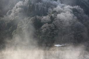 菅野湖の気嵐の写真素材 [FYI03376588]