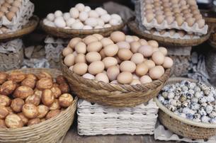 いろんな卵の写真素材 [FYI03376652]