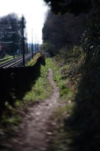 線路沿いの細い道 八国山緑地の写真素材 [FYI03376656]