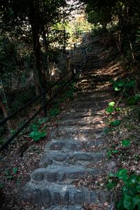 古羅漢の景自然歩道の写真素材 [FYI03376707]