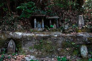 古羅漢の景自然歩道の石仏の写真素材 [FYI03376725]