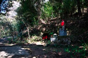 古羅漢の景自然歩道の写真素材 [FYI03376727]