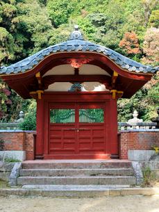 随願寺の写真素材 [FYI03376743]